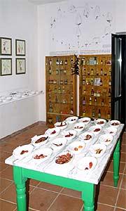 Getrocknete Chilis aus aller Welt, Hot-Sauce-Sammlung