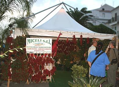 Gärtnerei Miceli aus Scalea