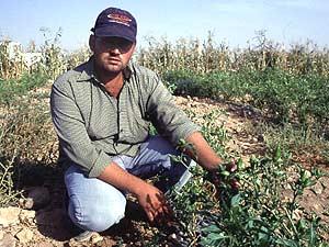 Abdallah Al Sodah with 'Bullets' on the bush