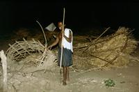 Von Elefanten zerstörte Hütte